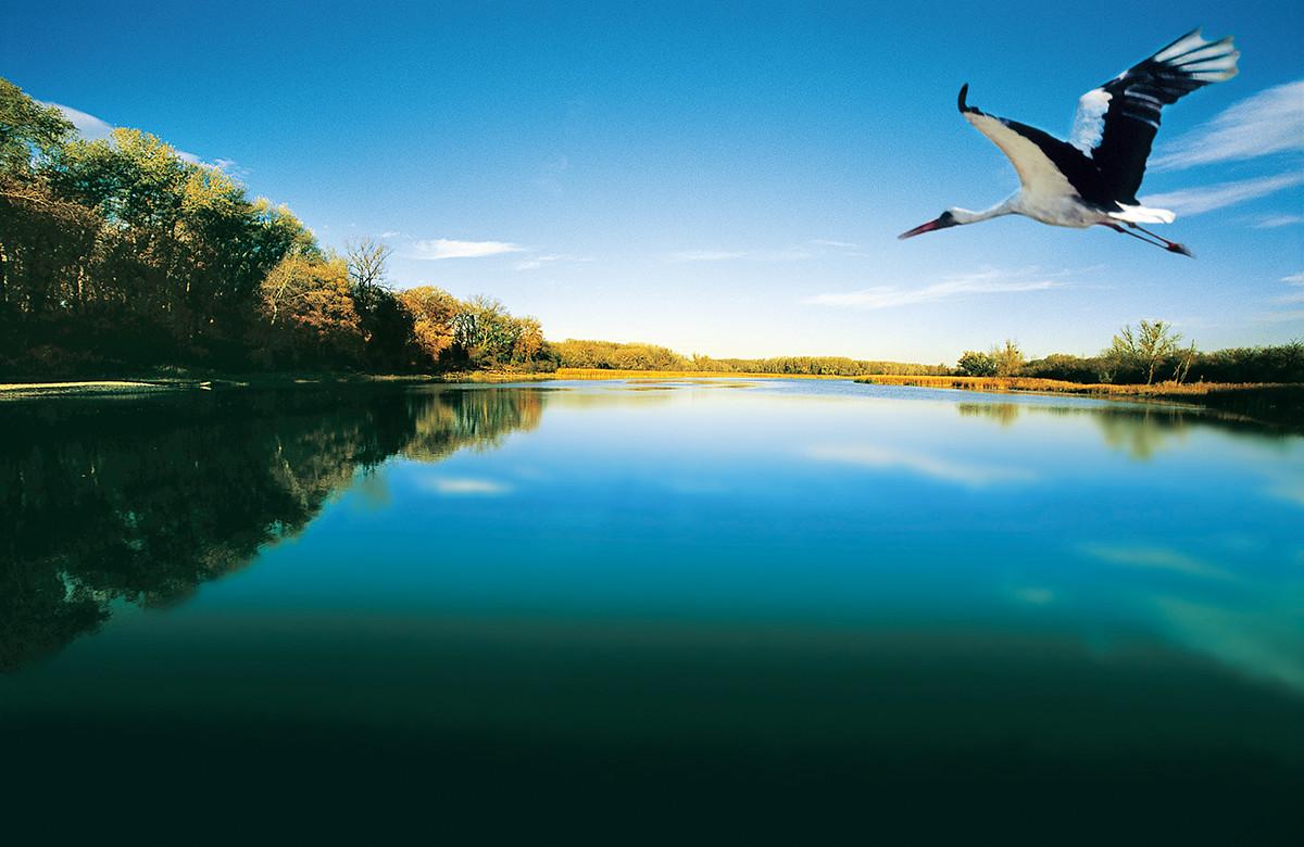 Online Website Design Leitsystem Nationalpark Donau Auen H2p Projekte